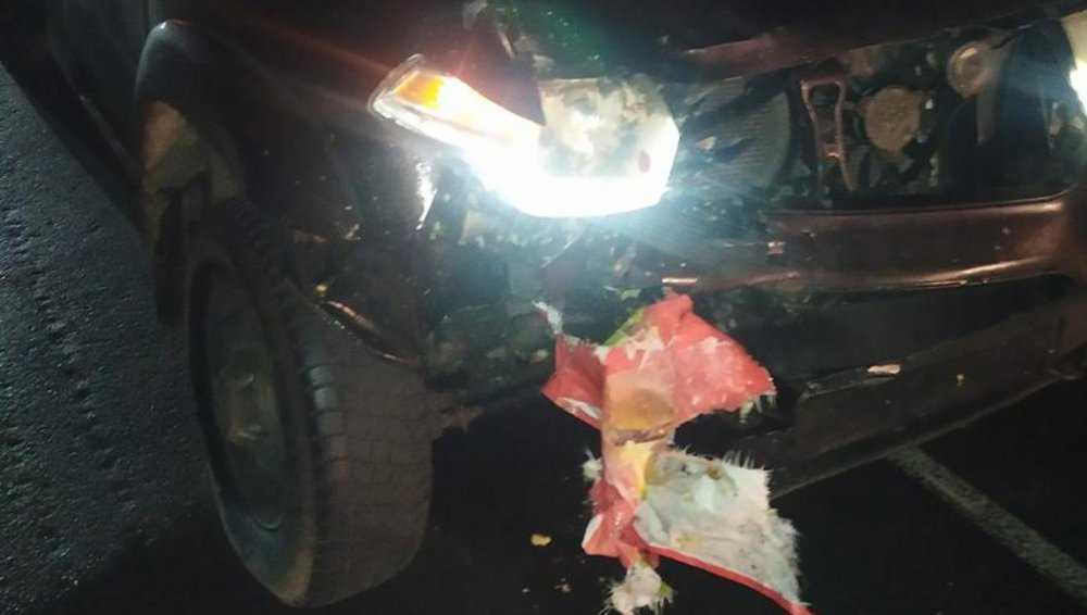 Под Новозыбковом женщина погибла под колесами УАЗа