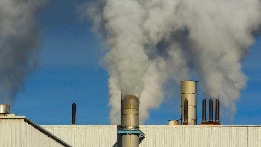 Брянская компания «Деснянский лен» загрязнила почву и воздух отходами