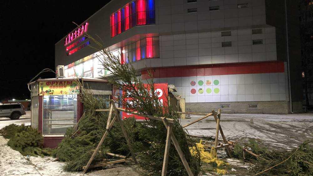 В Брянске подняли истерику из-за тридцати непроданных новогодних ёлок
