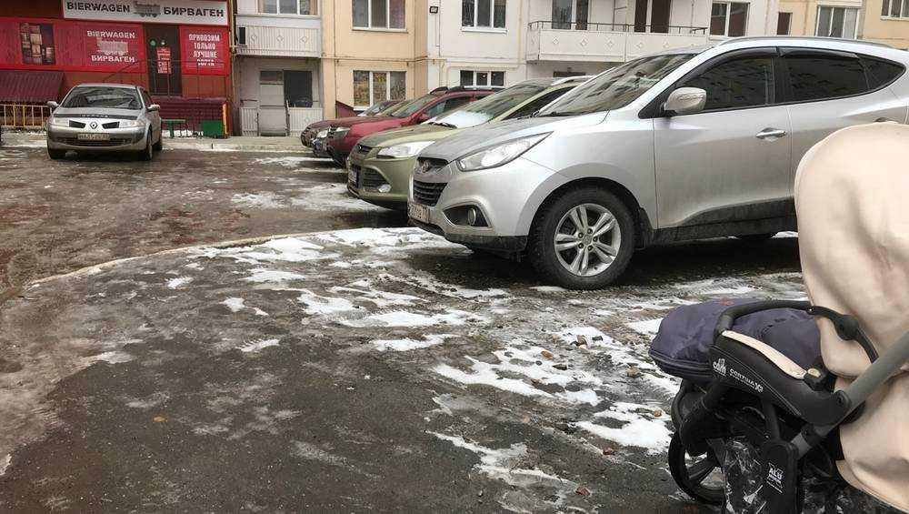 Петербурженка обвинила брянских чиновников в лютой ненависти к детям