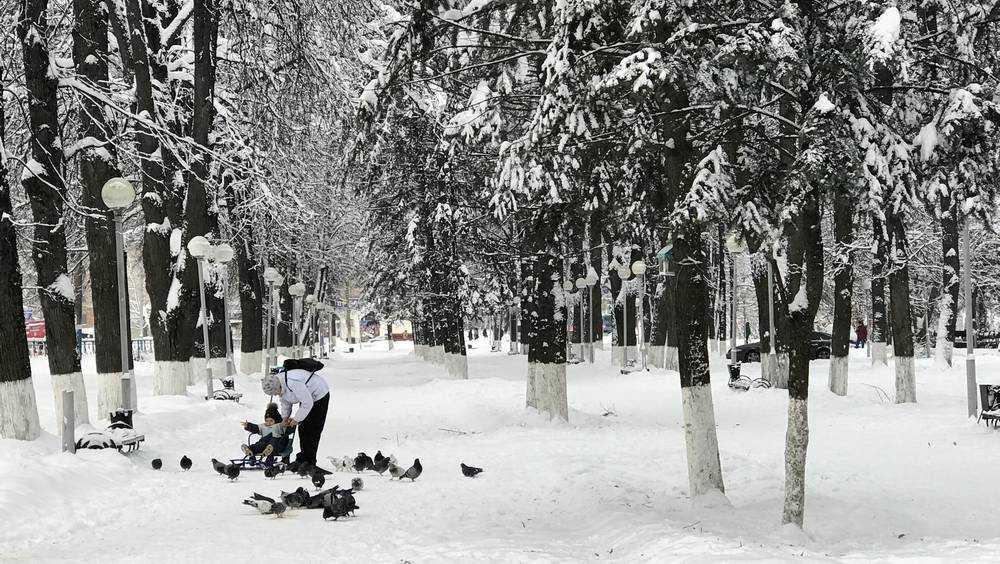 На Брянскую область обрушится сильный снегопад