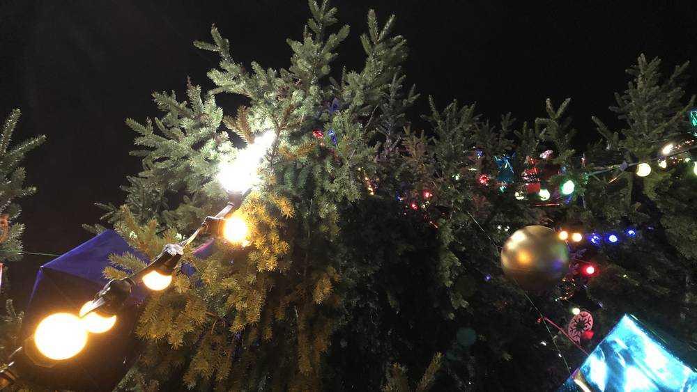 Жители Брянска вышли в новогоднюю ночь на улицу к елкам