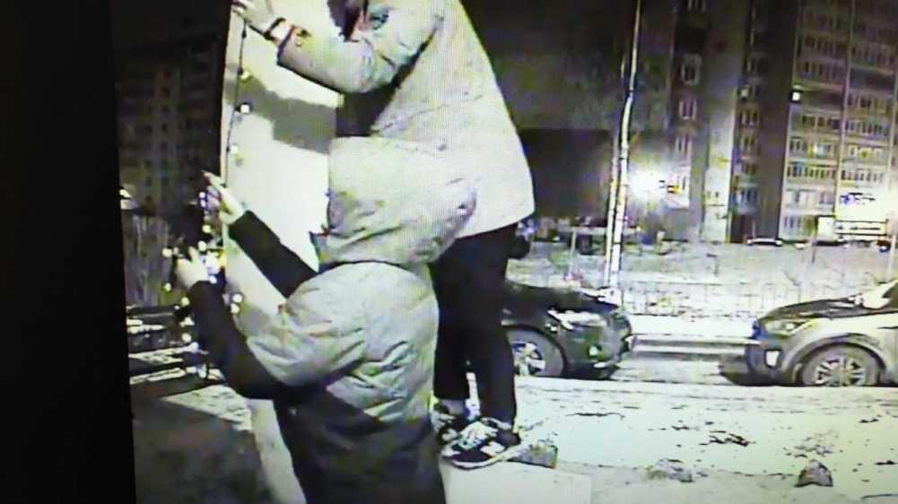 В Брянске начали розыск юных похитителей новогодних гирлянд