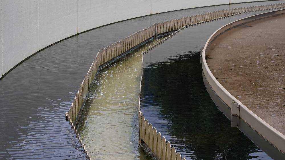 Загрязнитель брянских рек построит очистные к осени
