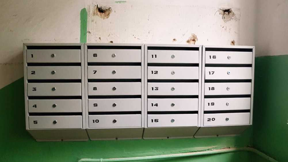 Житель Трубчевска обвинил крыс в краже газет из почтового ящика