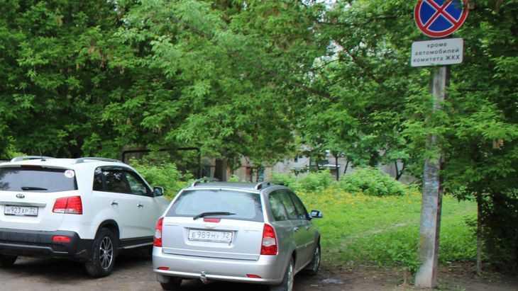 В Брянске подняли истерику из-за машин на месте спиленных деревьев