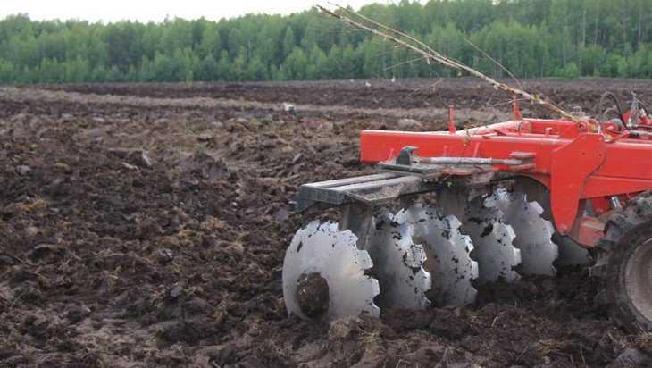 В Брянской области будут выращивать опийный мак