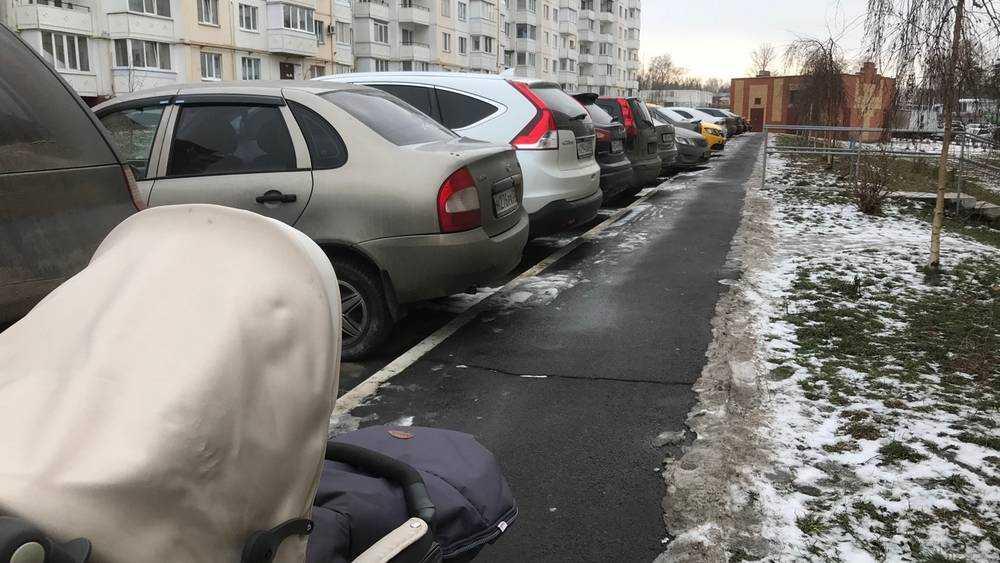 Брянцы откликнулись на жесткую критику чиновников петербурженкой