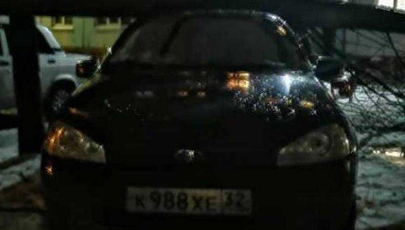 В Брянске упавшее дерево разбило автомобиль на Горбатова