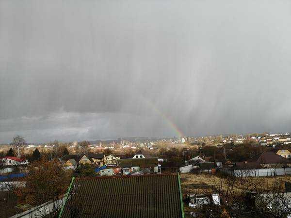 Погода 23 февраля удивила брянцев
