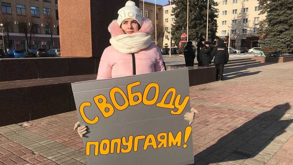 В Брянске прояснили суть беспощадной борьбы за свободу попугаев