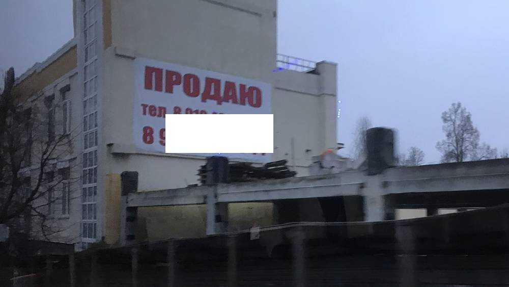 Умельцы показали, как избушку в Брянске можно продать за 28 млн рублей