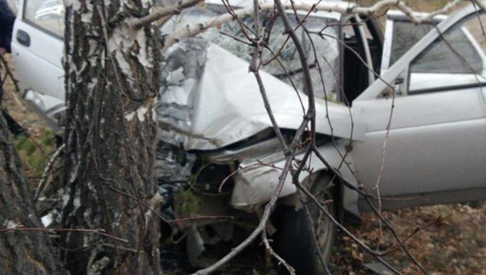 В Унече 18-летний водитель BMW врезался в дерево и ранил пассажира