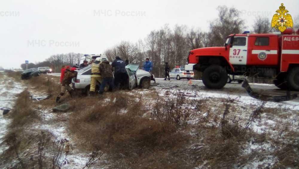 Под Почепом спасатели извлекли человека из разбитого автомобиля