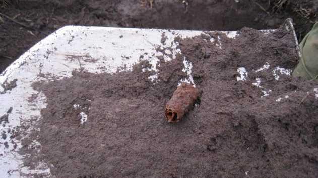 В Брянской области обнаружили останки четверых бойцов Красной армии