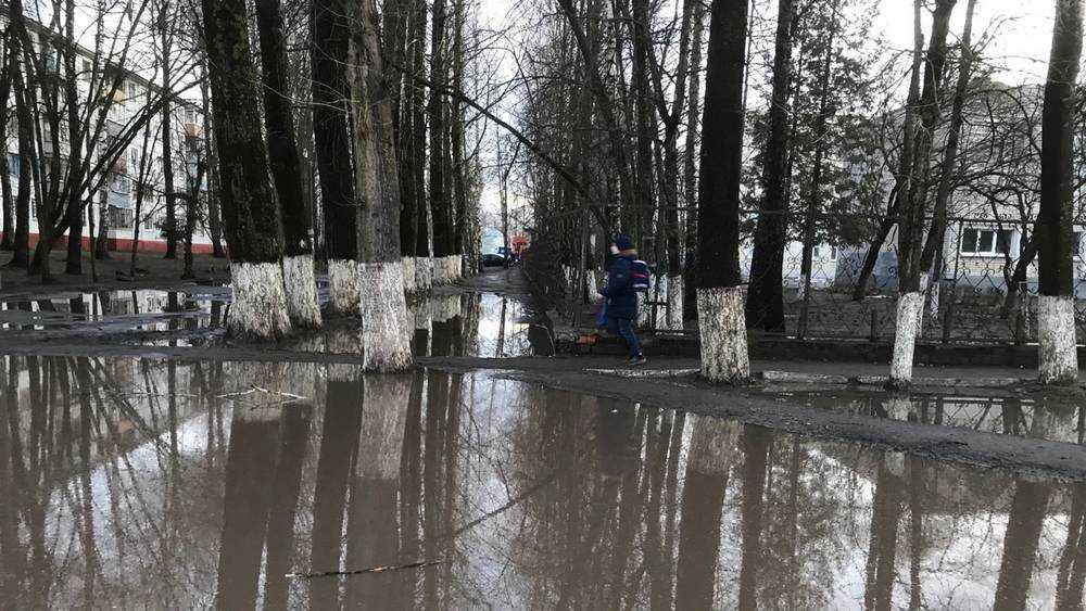 В Брянске школа на улице Горбатова превратилась в полуостров