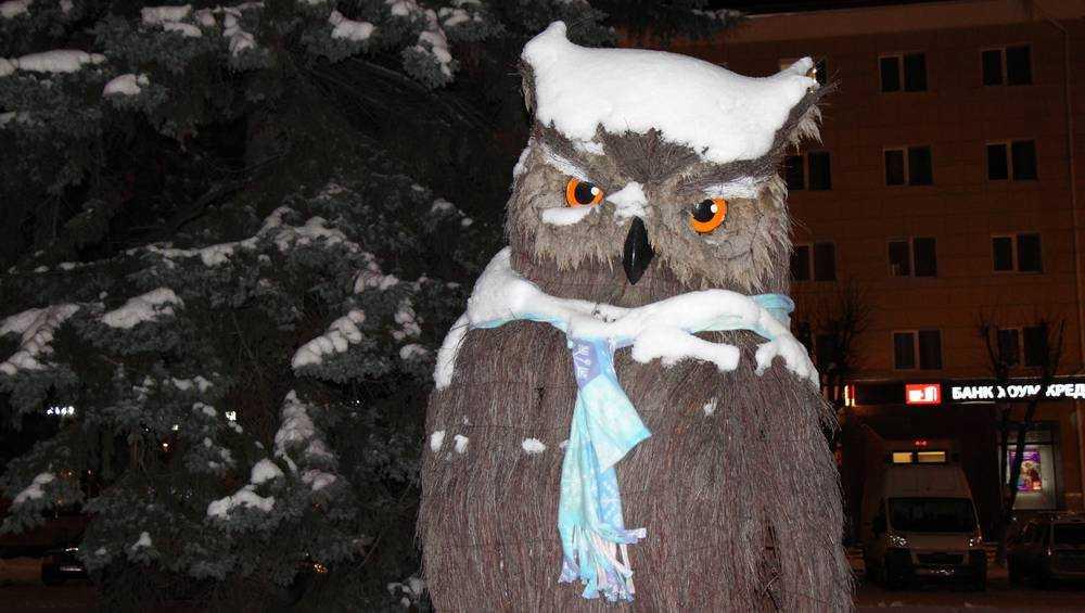 В Брянской области похолодает до 12 градусов мороза