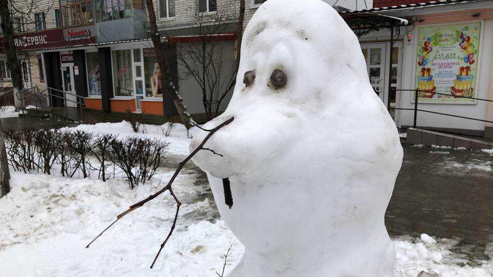 Брянцев предупредили о мокром снеге и гололедице