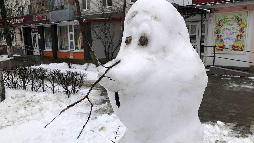 В Брянске взгрустнул последний снеговик