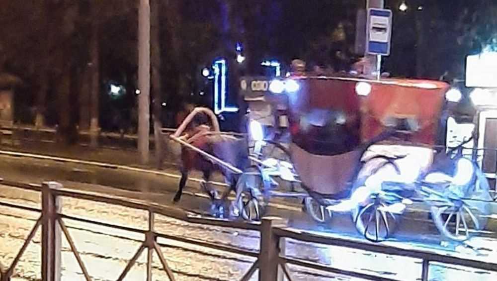 По Брянску ночью проехала карета с одной лошадью