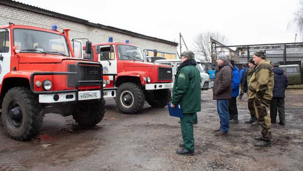 Рослесхоз предупредил об угрозе опасных пожаров в Брянской области