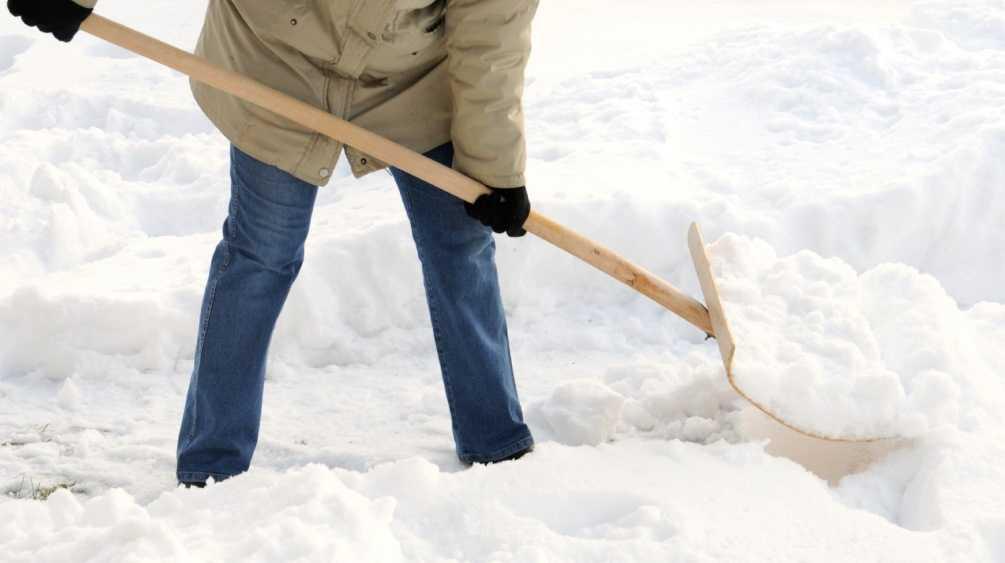 Выгоничского чиновника оштрафовали за не очищенные от снега дороги