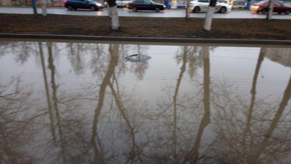 В Брянске «вечная» лужа возле лицея №27 опять превзошла ливневку