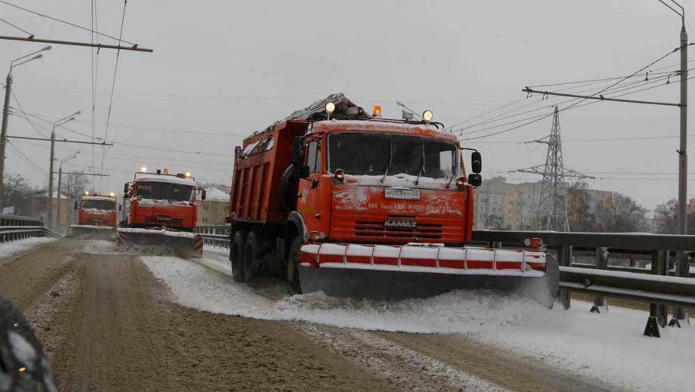 В последний день осени Брянск замело снегом