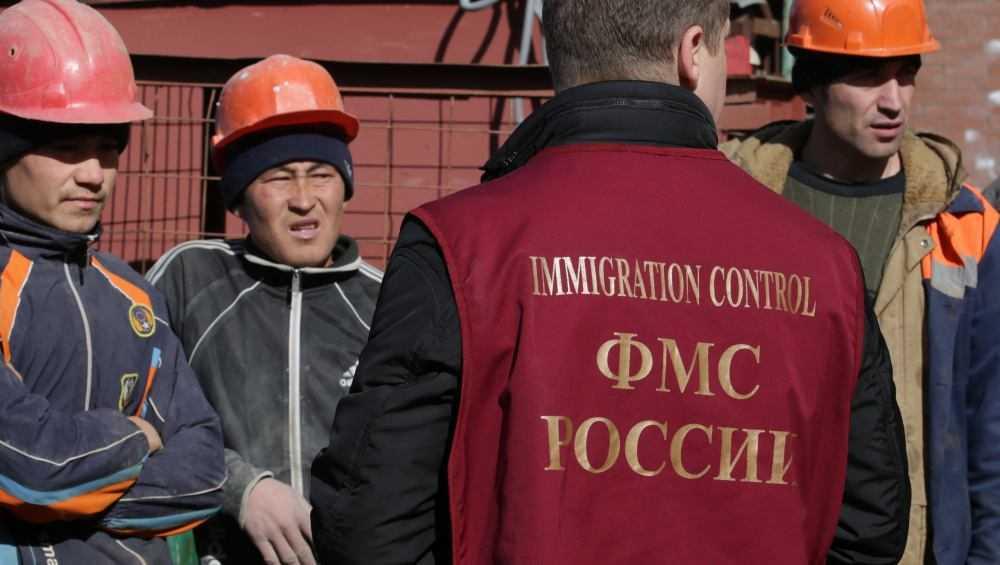 Брянцы смогут на горячую линию сообщить о нелегальных мигрантах