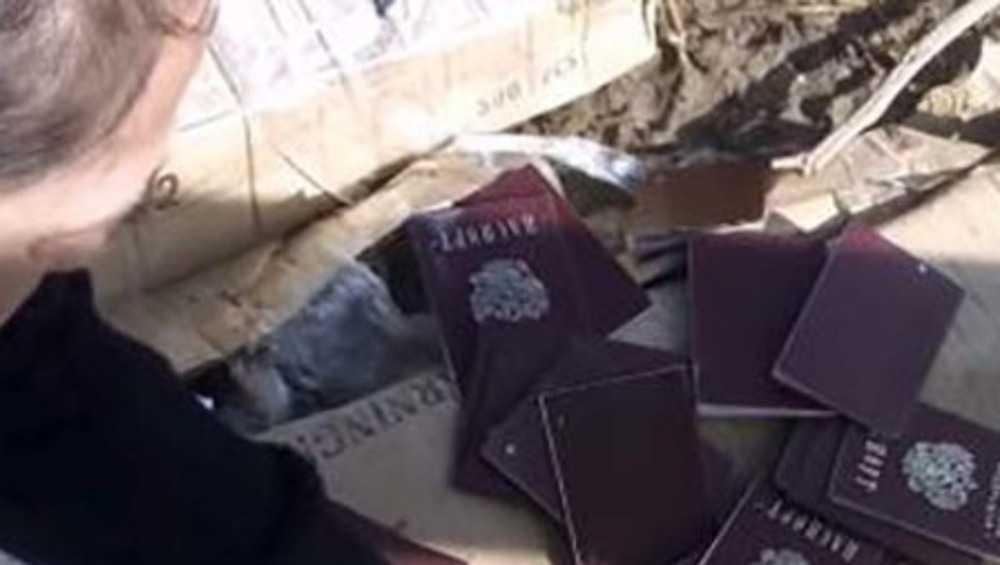 На свалке под Брянском нашли 10 российских паспортов и 3 полиса СНИЛС