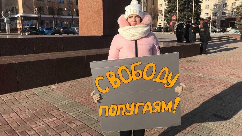 В Брянске на площади Ленина потребовали свободу Коломейцеву и попугаям