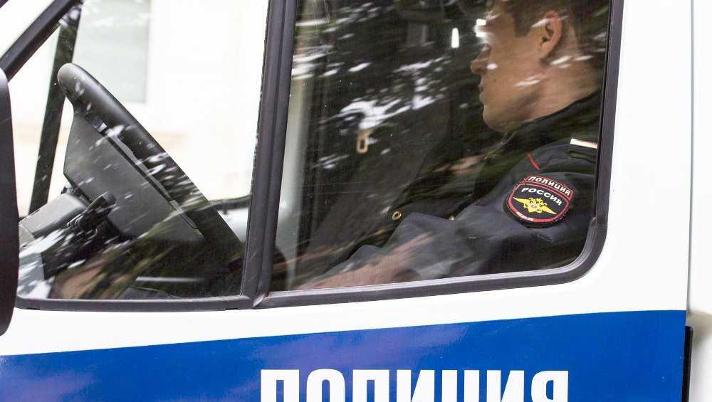 В Брянске возбудили дело после массовой драки из-за агрессивных собак