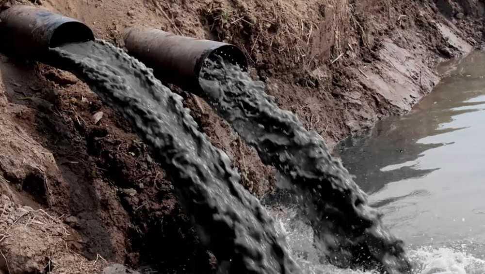 В шести районах Брянщины предприятия наказали за сброс стоков в водоёмы