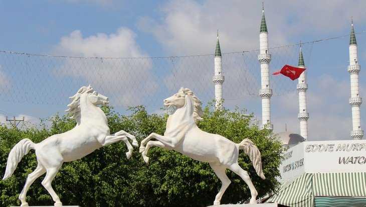 Турецкие грузовики с помидорами застряли перед брянской границей