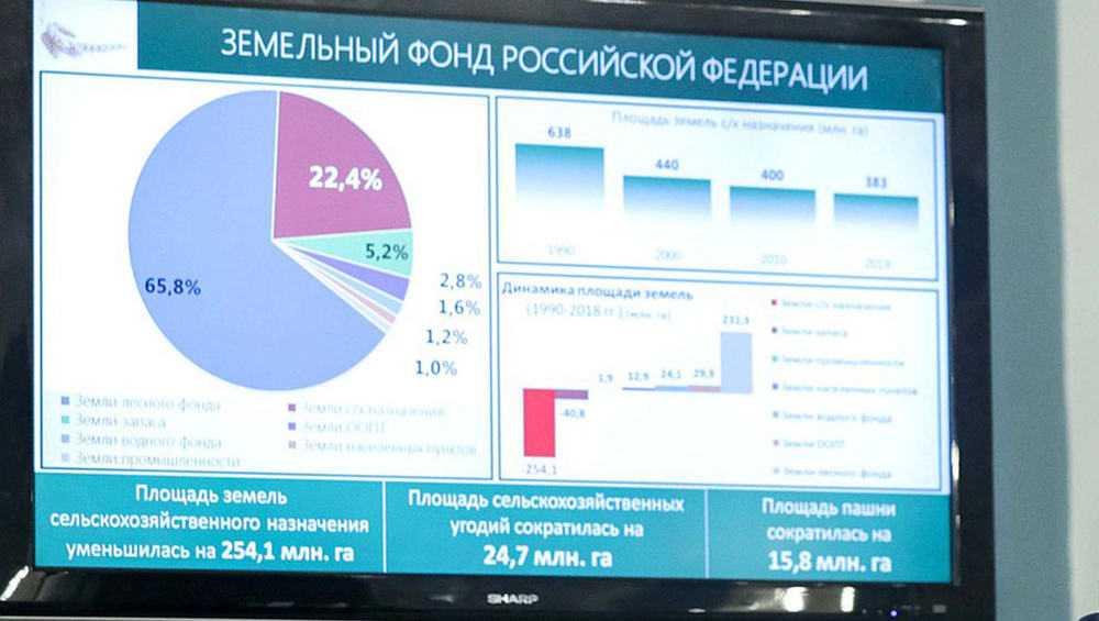 Брянская область стала лидером по вводу земель в сельхозоборот