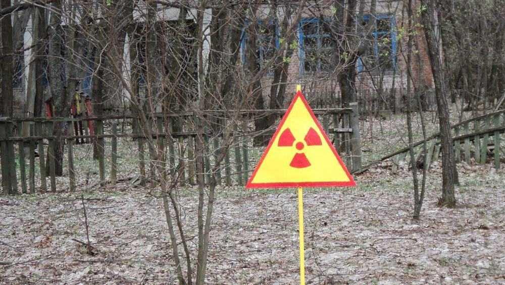 Брянская область станет чистой от радиации через 320 лет