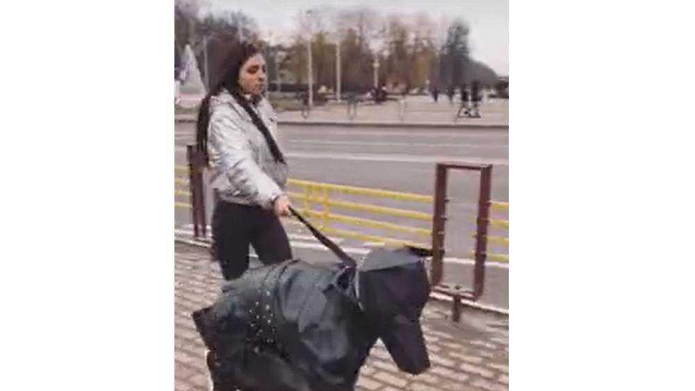 Брянская скандалистка прогулялась с мужчиной-«псом» на поводке