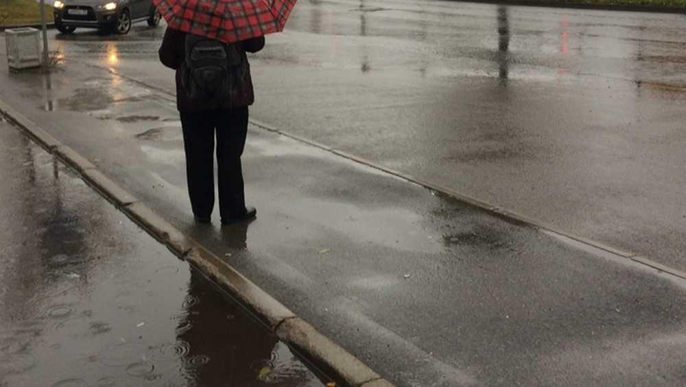 Брянцам 30 октября пообещали дождь и 12-градусное тепло