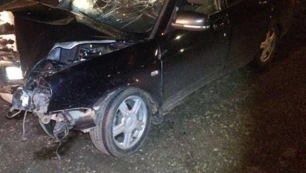 Возле Партизанской поляны брянский автомобилист протаранил дерево