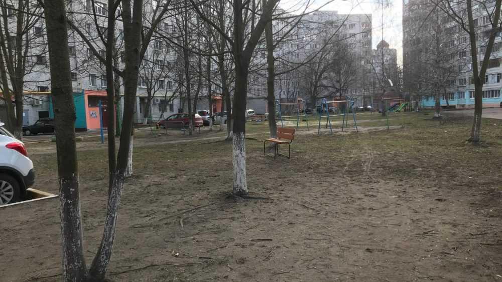 Жители Брянска возмутились беспочвенными обвинениями в свинстве