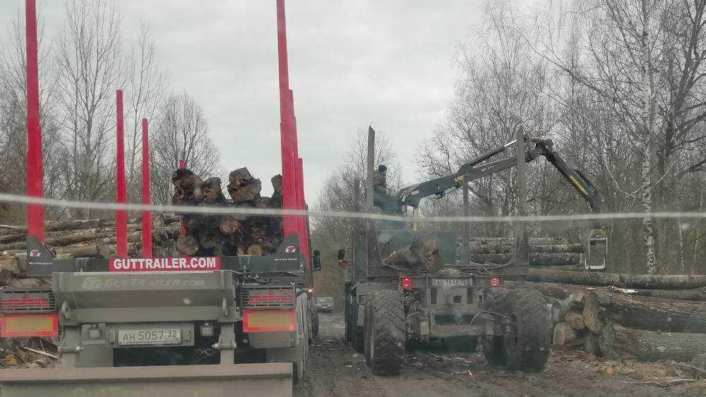 Брянские чиновники и надзорные органы проспали уничтожение дороги