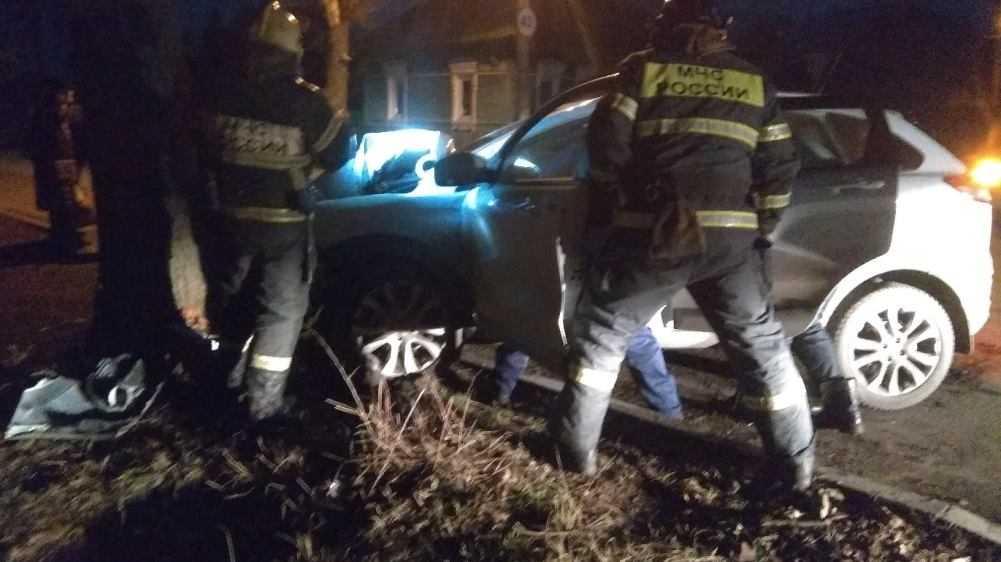 В Брянске водитель скончался за рулём и врезался в дерево