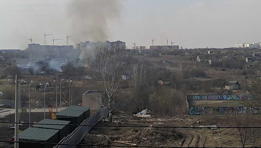 В Брянске в нескольких местах подожгли траву
