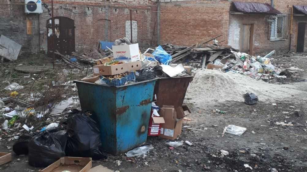 Жителей Трубчевска возмутила свалка в центре города