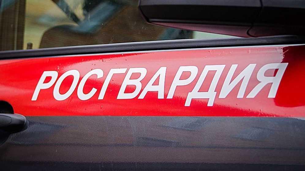 В брянском сквере росгвардейцы задержали мужчину за кражу из магазина