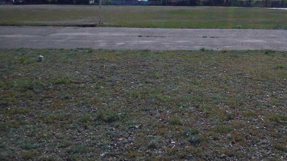 В Брянске за счет областной казны отремонтируют стадион «Локомотив»