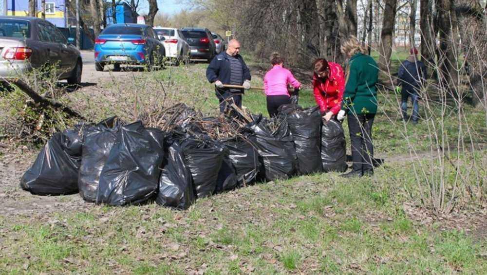 С улиц Брянска в мае вывезли более 2000 тонн мусора