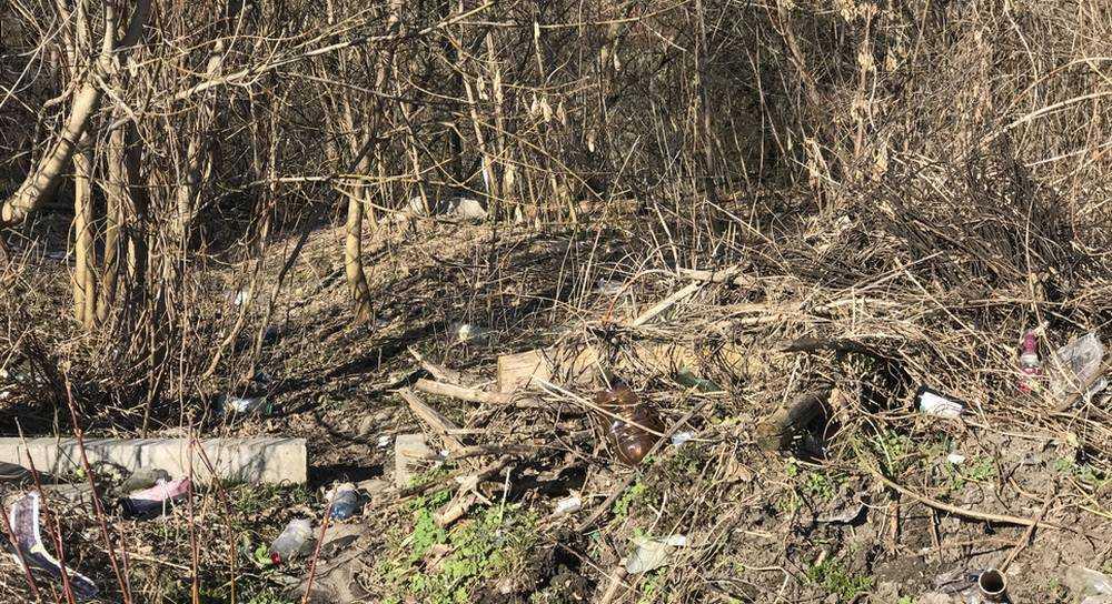 Судок около брянского Дворца Гагарина превратили в свалку