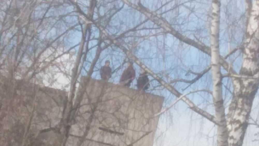 В Брянске подростки учинили обстрел камнями и бутылками с крыши дома