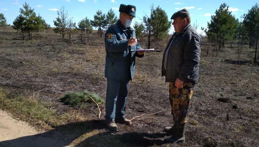 В Брянской области 10 человек оштрафовали за сжигание сухой травы